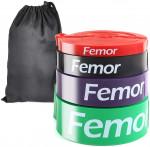 Femor AAM10