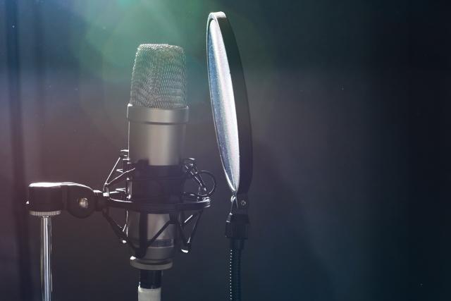 utilità microfono condensatore