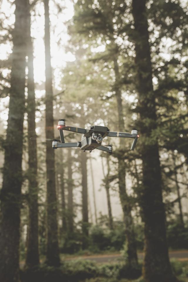 un drone che vola nella foresta