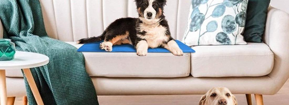 tappetino refrigerante per cani
